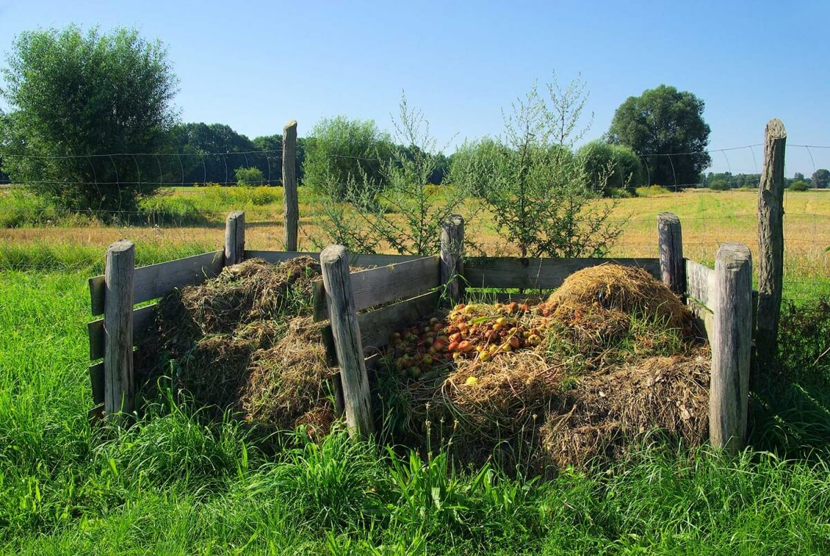 Compost has multiple benefits for farmers.
