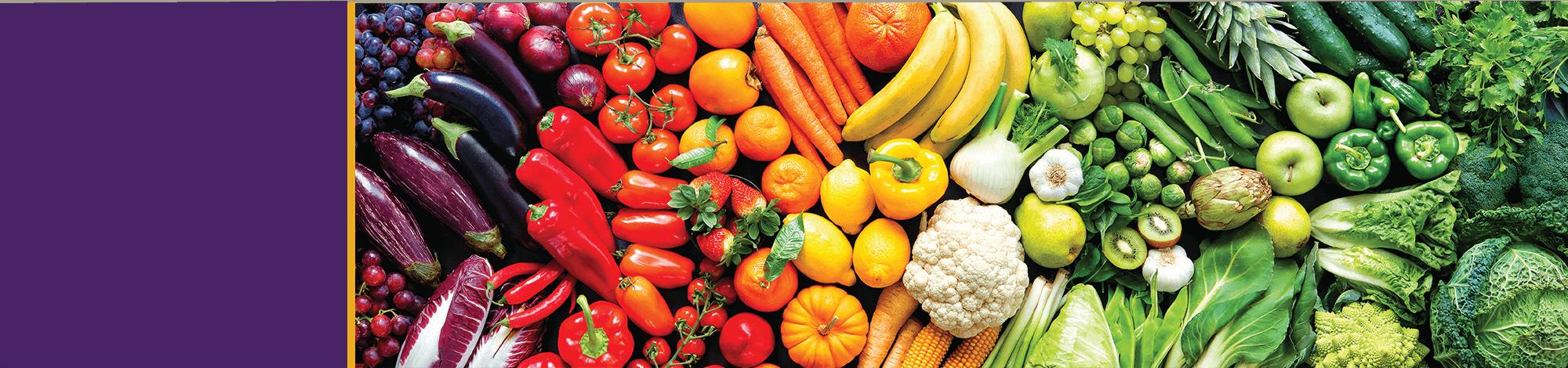 Food Waste Reduction Whitepaper